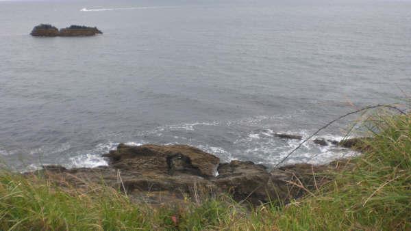 Pike Torcross Dartmouth 24
